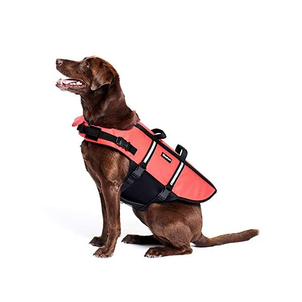 Zippy Paws Life Jacket Dog, Red, Small Click on image for further info. 5