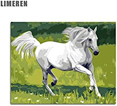 Mbywq Pintura Al Óleo Por Número Animal Horse Meadow Horse Running White Horse Coloring By Numbers(Sin Marco)