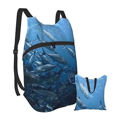 Mochila portátil plegable, para adultos, color azul océano, plateado, antirrobo, delgada, duradera, para portátiles