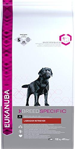 Eukanuba Alimento seco para perros labrador retriever adultos 12 kg