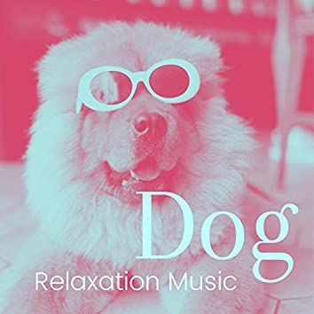 Dog Relaxation Music: Anti-Anxiety Music for Dogs, Cats, Pets