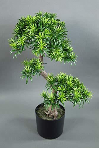 Seidenblumen Roß Bonsai Podocarpus 70cm im Topf CG künstlicher Baum Kunstbaum Kunstpflanzen Dekobaum