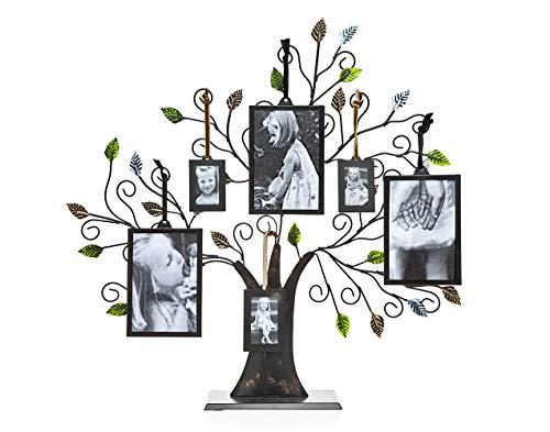 Tree of Life Display