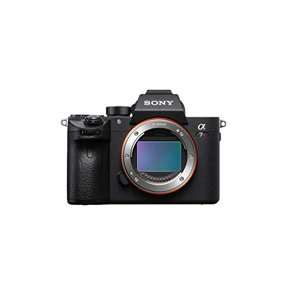 RetinaPix Sony A7R Mark III Body Only (ILCE-7RM3/BC) Camera
