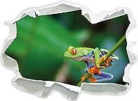 KAIASH ウォールステッカー 枝紙に緑色の小さなカエル3D壁の装飾3D壁ステッカーWandtattoo-62x45cm