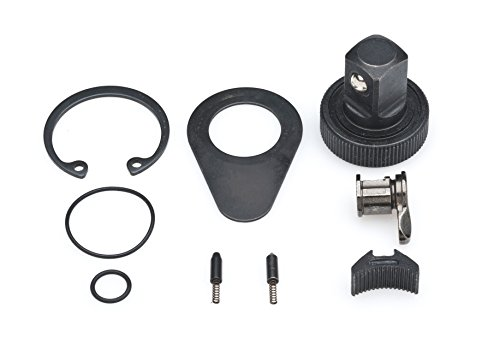 GearWrench 813391/5,1cm Drive 60Zahn non-quick Release Ratsche Reparatursatz, schwarz