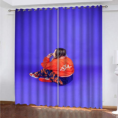 MENGBB Blackout Curtain for Kids Girls Microfiber 43x55 inch Girl blue art Thermal Insulated 95% Blackout Kitchen Bedroom Living Room Window Eyelet Curtains