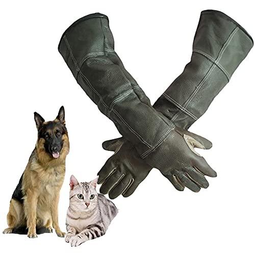 DAN Animal Handling Handschuhe für Katze Hund Vogel Schlange Papagei Eidechse, Anti-Biss/Kratzer Gardening Wildtiere Schutzhandschuhe