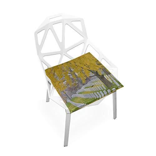 Cojín de silla de escritorio Pequeño cementerio nacional de Arlington cerca de Washington Dc Cojines de silla de espuma de memoria antideslizante suave Cojines Asiento para cocina en el hogar Escritor