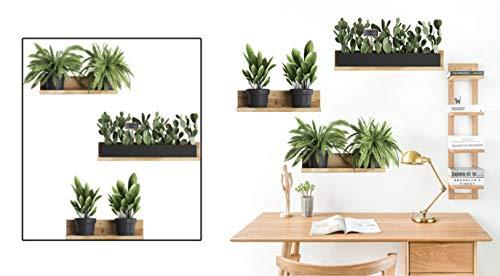Pegatinas Pared Plantas Verde Adhesivo Pared Planta en Maceta con Estante 3d Adhesivos Pared (plantas - cactus elíptico)
