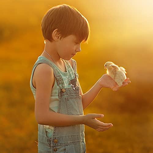 AniPlus – Kieselgur Spray 400 ml für Kaninchen & Nager gegen alle kriechenden Insekten und Schädlinge (100% biologisch) - 5