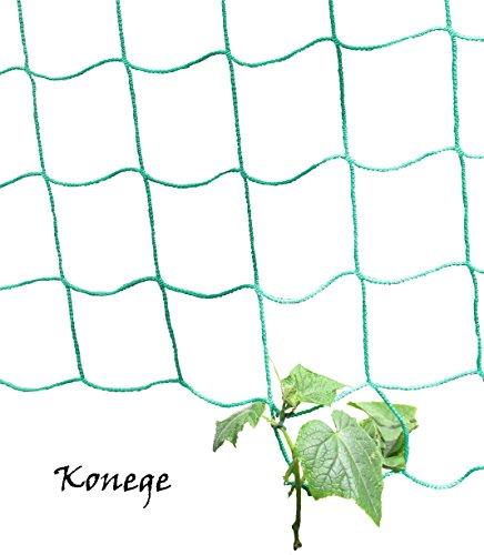 Gewächshaus & Beet Rankhilfe Ranknetz für alle Kletterpflanzen - Höhe 2,0m x Länge 3,0m