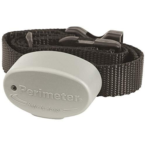Perimeter Technology - unsichtbarer Zaunhalsband, kompatibel mit R21 - wählen Sie die Frequenz Ihres Zauns