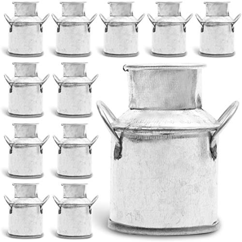 Mini Galvanized Metal Jug for Decoration (2 Inches, 12 Pack)