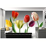 Lovemq Murales 3D Personalizados, 3D Seis Hermosos Tulipanes Papel De Parede, Sala De Estar Sofá Tv Pared Papel Tapiz Dormitorio Tapetes Fotográficos-190X150Cm