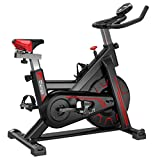 Biange Stationary Bikes Indoor Cycling Exercise Bike, Fully-wrap 22 LB Flywheel Fitness Spin Bikes for Home Gym Cardio Workout, Belt Drive Exercize Bike with Digital Monitor