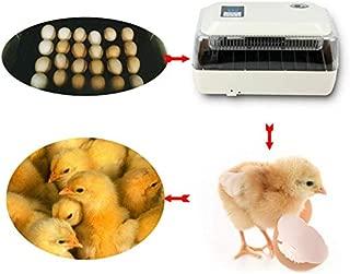 Best chicken breeding machine Reviews