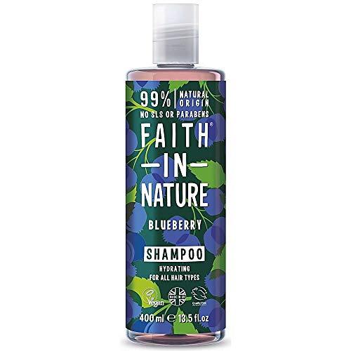 Faith in Nature Natürliches Blaubeere Shampoo, Feuchtigkeitsspendend, Vegan & Ohne Tierversuche, Frei von Parabenen und SLS, für Alle Haartypen, 400 ml