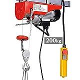 Timbertech - Palan Électrique avec Télécommande 100 kg/200 kg 230V (Capacité au Choix)
