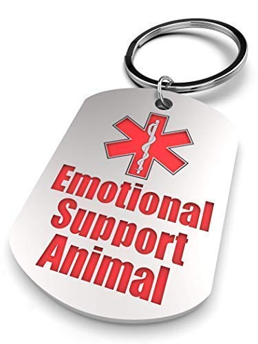 ESA Tags - Two Stainless Steel Emotional Support Animal Medical Alert - ESA Dog CAT Rabbit TAG