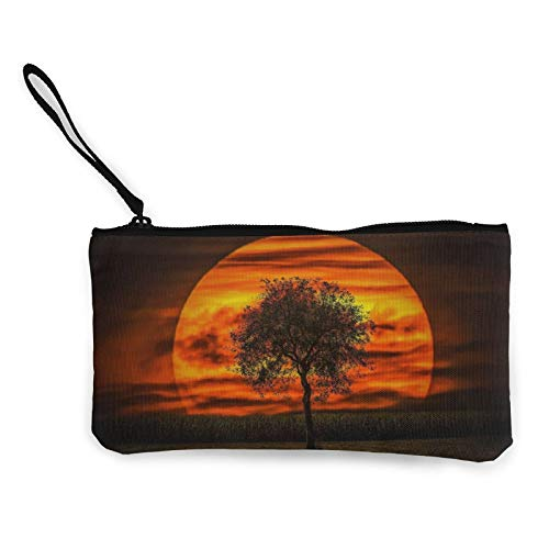 Simply Sunset Womens Coin Change Purse Pouch Multipurpose Toiletry Bags Wallet Craft Bag