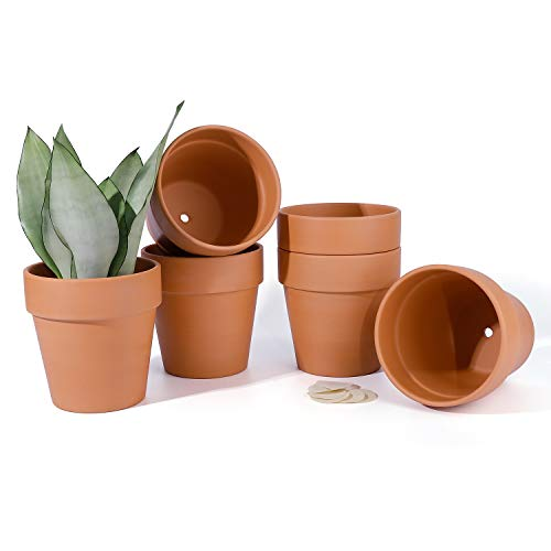 POTEY 202361 Terra Cotta Planter Pots with Drainage Hole - 5.5 Inch Medium Terracotta Flower Containers Clay Pots Gardening Indoor Outdoor Pottery Minimalist - 6-Pack, Unglazed