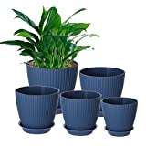 Genenic Plant Pots