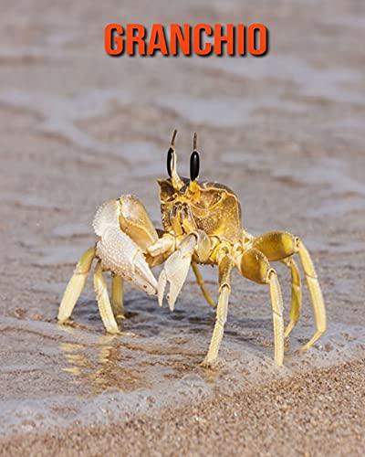 Granchio: Immagini bellissime e fatti interessanti Libro per bambini sui Granchio