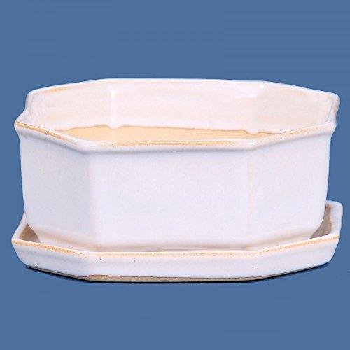 Bonsaï – Bol 8 pans 14 Ø x 5 cm cm, avec soucoupe, blanc 16056