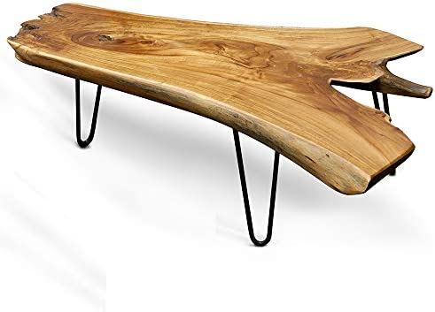 Clear trunk coffee table _image0