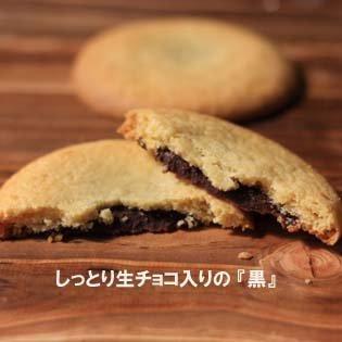 熱海 初島 お土産 菓子 しっとり 生チョコ サブレ 初島ロマンス 黒9枚