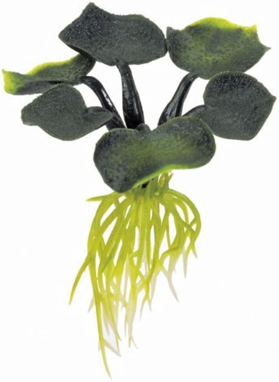 Exo Terra Water Plant, Hyacinth by Exo Terra