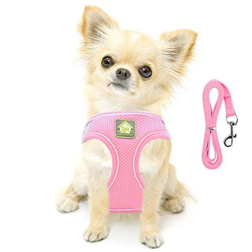 FeiLuo Hundegeschirr mit Leine für Hunde, Weich Mesh Brustgeschirr für Mittlere und Kleine Hunde/Katzen, Verstellbare Reflektierende Atmungsaktive Welpengeschirr Puppia Vest Harness (XS, Rosa)