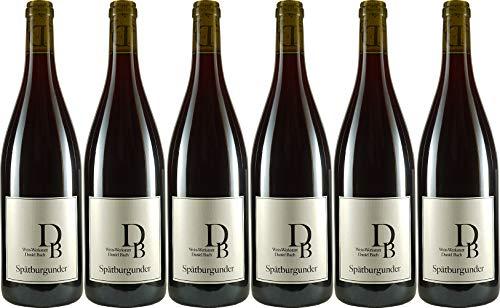 Wein-Werkstatt Daniel Bach Spätburgunder 2015 Trocken (6 x 0.75 l)