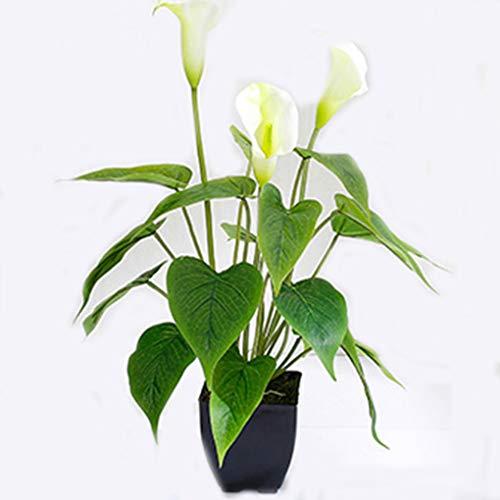 Sarazong Fleur de lis Calla Artificielle, Fleur éternelle Décoration de Sol Composition Florale Faux Fleur Salon Ameublement Fleur Artificielle,White