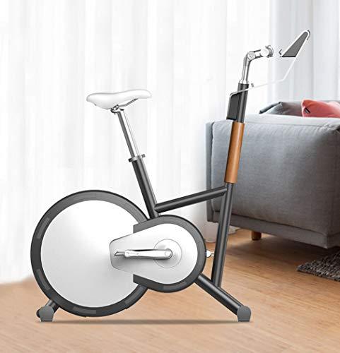 Indoor Cycling Bike, Silent Belt Drive Cycle Bike met verstelbaar stuur en stoel, verchroomd vliegwiel, fitnessfiets en ab-trainer, sportuitrusting
