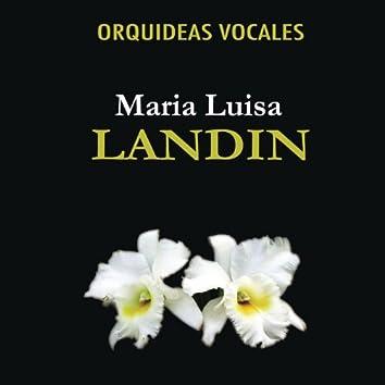 Orquideas Vocales