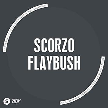 Flaybush