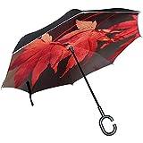 Galleria di ombrelli rovesciati Ombrello inverso a doppio strato foglia rossa Ombrello con manico a forma di C.