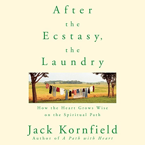 After the Ecstasy, the Laundry audiobook cover art