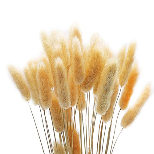 LIVING LEGEND All Natural Rabbit Tail Grass - 100 Pieces, 45 cm Off White Lagurus Ovatus Bunny Rabbit Tail Dried Flowers - Elegant Boho Home Decor -Pampas Grass for Home, Wreaths, Vase, Wedding