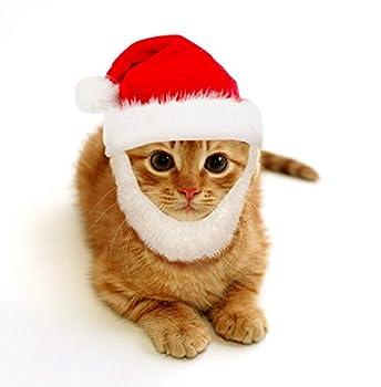 comfort santa cat costume