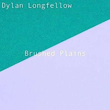 Brushed Plains