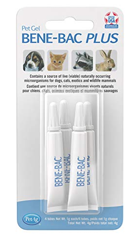 Pet Ag Bene-Bac Bird Plus Prebiotic Pet Gel Aid Animal Health Supplies 4Pack