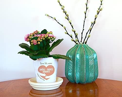 Motif Fleuri F/ête des m/ères Pot de Fleurs Original Personnalisable Pot Fleurs c/éramique Cadeau F/ête des Grands-m/ères 10 cm