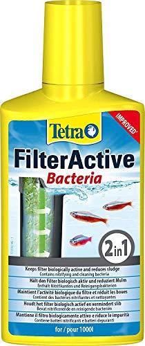 Tetra 759845/767 FilterActive Wasserpflege