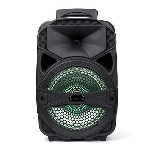 Logtronik - Altavoz portátil con LED de 8 pulgadas (Bluetooth, sonorización con batería recargable, altavoz con entrada USB/SD/AUX/FM para Navidad, fiestas, karaoke, etc), color negro
