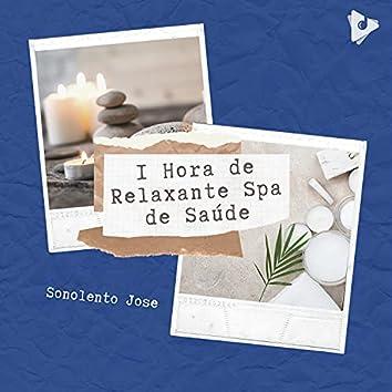 1 Hora de Relaxante Spa de Saúde