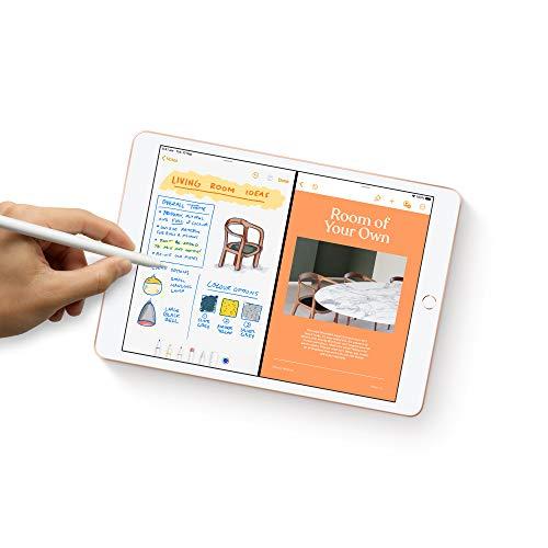 Apple iPad (10.2-inch, Wi-Fi + Cellular, 32GB) - Space Grey (Latest Model)