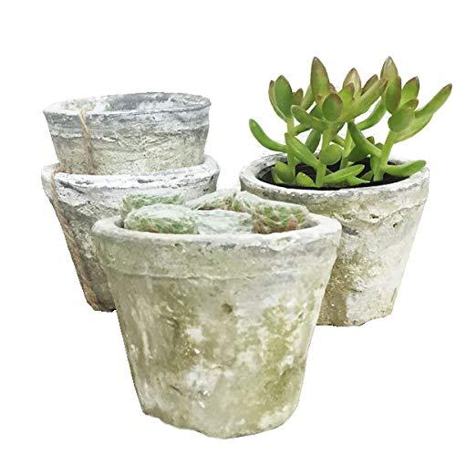 モスポット ホワイト3鉢 植木鉢 陶器鉢 テラコッタ鉢 素焼き鉢 鉢底穴アキ プランター おしゃれな植木鉢 mossポット